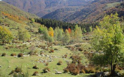 Domenica 04/10/20 – Oasi Zegna, La strada dell'Alpe (BI)